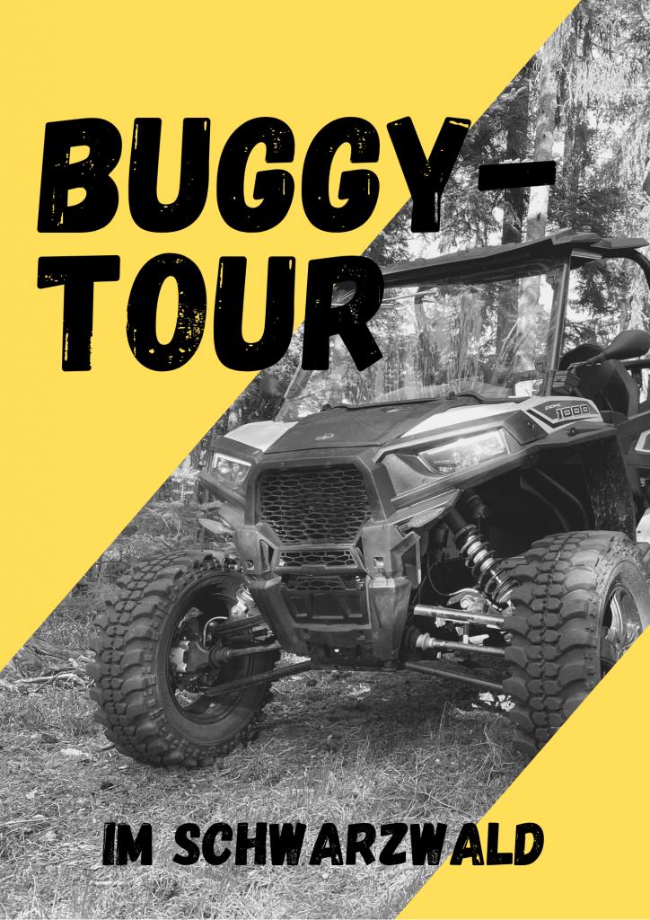 Buggy Tour(1)