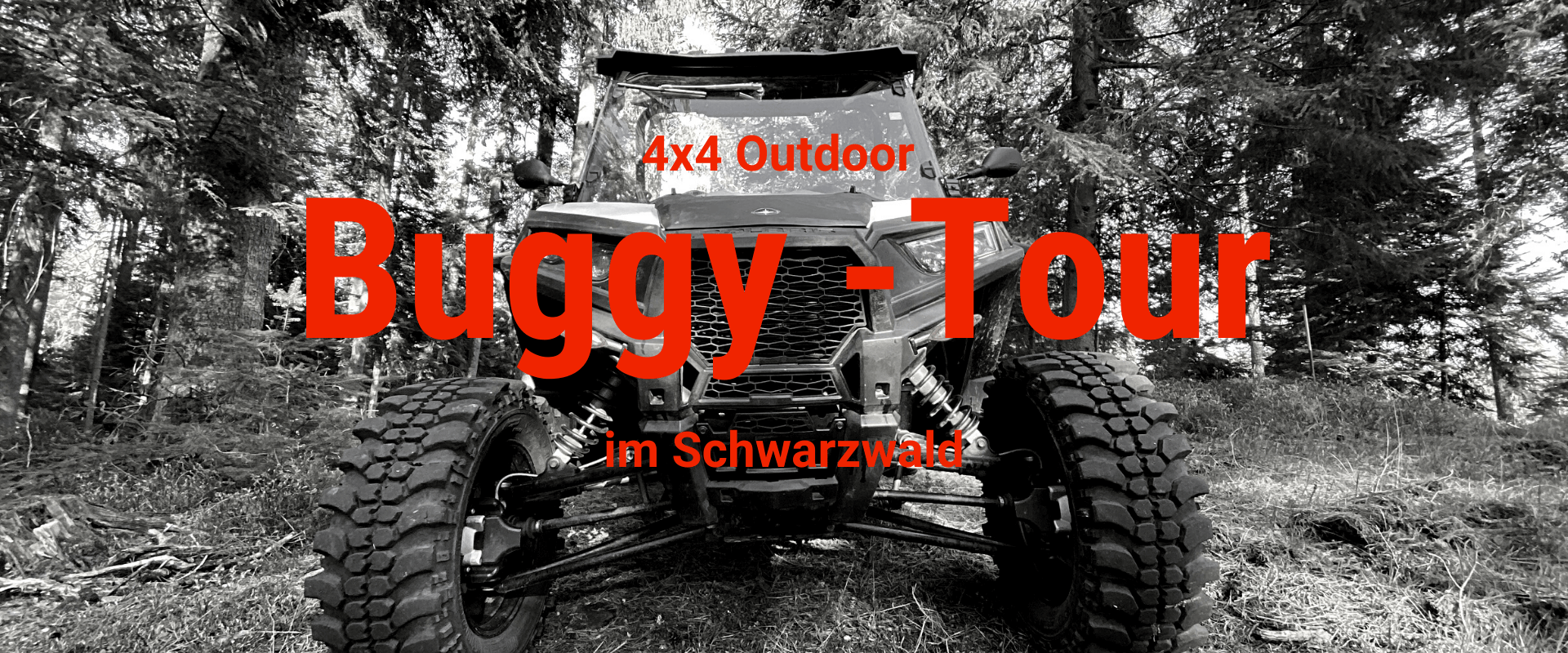 schwarzwald-erlebnis-buggy-tour